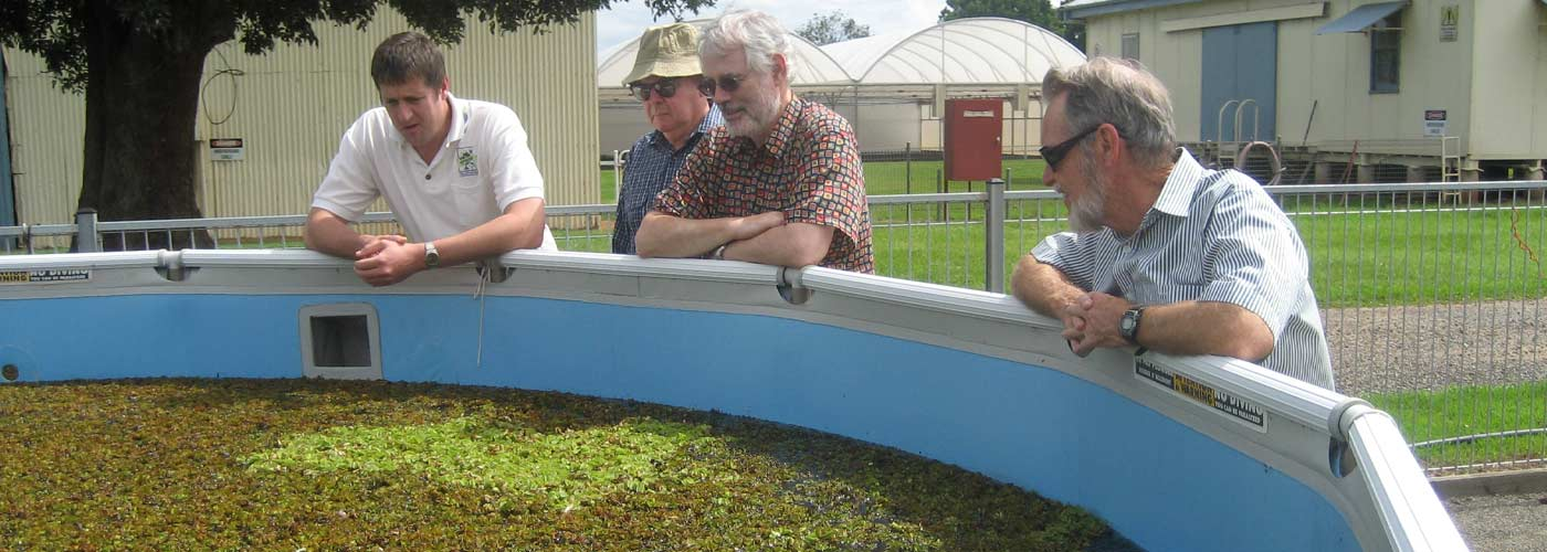 Review of WoNS Program - Biocontrol Aquatic Weeds